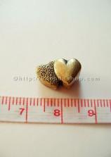 Ống trụ đôi trái tim