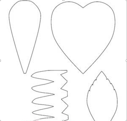Vẽ phác các cánh hoa và lá